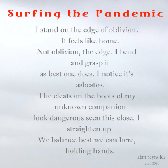 Surfing the Pandemic