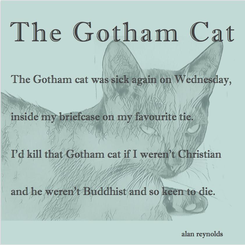 The Gotham Cat
